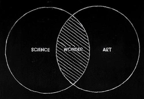 ciencia e arte