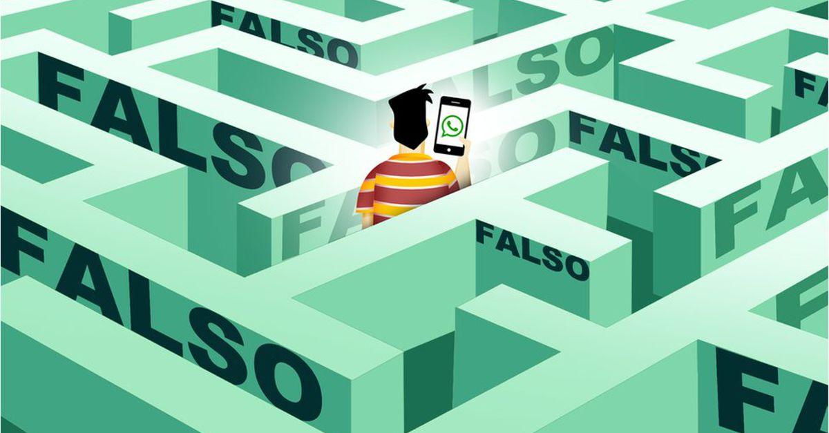 Educação contra a desinformação